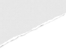 Ripped esquadrou o papel cinzento para o texto ou a mensagem está no fundo branco Ilustração do vetor ilustração do vetor