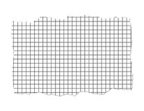 Ripped Graph Paper Illustration. Isolated on white stock illustration