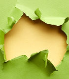 Ripped green paper Royalty Free Stock Image