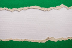 ripped green paper on white background Royalty Free Stock Photos