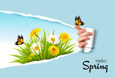 Ripped by hand paper background, revealing spring flowers Stock Images