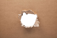 Ripped hole in cardboard on white background Royalty Free Stock Photos