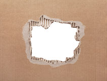 Ripped hole in cardboard on white background Stock Images