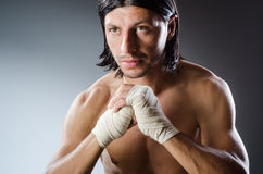 Ripped martial arts Royalty Free Stock Image
