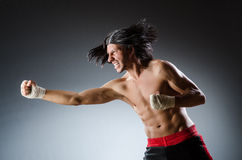 Ripped martial arts Royalty Free Stock Photos