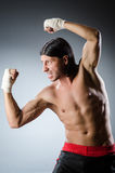 Ripped martial arts expert Royalty Free Stock Images