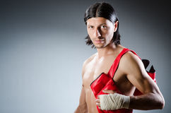 Ripped martial arts expert Royalty Free Stock Image