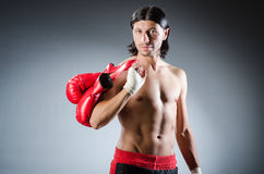 Ripped martial arts Stock Photos