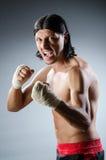 Ripped martial arts expert Stock Photos