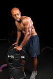Ripped Muscular Weight Lifter Royalty Free Stock Images