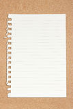 Ripped Off Blank Paper. Stock Images