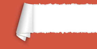 Ripped open paper with space for text. Red colored ripped open paper with paper curl and space for text Royalty Free Stock Photos