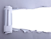 Ripped Paper. Space for own Text stock photography