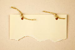 Ripped paper with. Brown rope Royalty Free Stock Photo