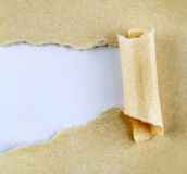 Ripped paper Stock Image