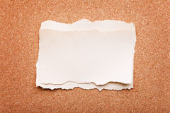 Ripped piece of paper on cork board Royalty Free Stock Images