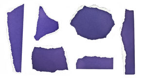 Ripped pieces of paper. Collection of purple ripped pieces of paper on white background Stock Images