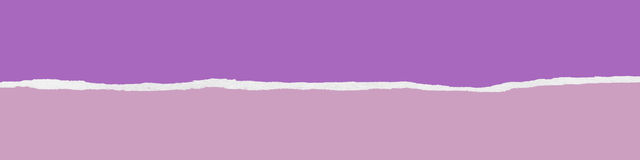 Ripped purple paper banner Royalty Free Stock Photos