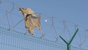 Ripped shirt hangs on a razor wire fence erected to keep immigrants away. high barrier with barbed wire in the background of the e