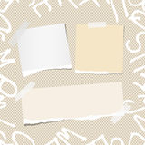 Ripped white and brown note, notebook, copybook paper strips. On pattern created of alphabet letters Royalty Free Stock Image