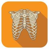 Rippen-flache Ikonen-Orange Stockbild