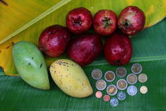 Rippen mangoes and malay apples with Thai coins Royalty Free Stock Images