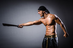 Ripper pirate Royalty Free Stock Photography