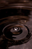 Ripple on the blackness Royalty Free Stock Photos