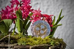 Ripple coin flower concept Royalty Free Stock Image