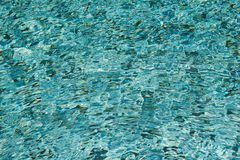 Ripple effect in the swimming pool. Royalty Free Stock Photo