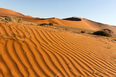 Ripple mark in the Namib Desert Royalty Free Stock Photography