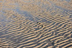 Ripple Marks on the North Frisian Island Amrum. In Germany Royalty Free Stock Photography