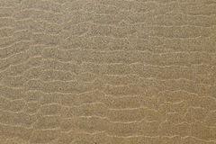 Ripple marks Royalty Free Stock Images