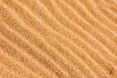 Ripple patterns on the sand. Ripple patterns blown by the wind on the beach sand Stock Images