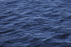 Ripple on the sea surface. Small waves on the blue surface of the sea Royalty Free Stock Images