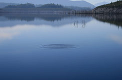 Ripple in still lake misty day,. Ripple in still lake on a misty day, strathgordon, Tasmania royalty free stock images