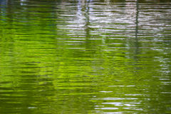 Ripple surface. Of the water background Royalty Free Stock Image