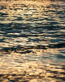 Ripple of water in sunset Stock Photos