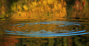 Ripple on water surface. In autumn stock photography