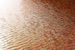 Ripple water in swimming pool Royalty Free Stock Photos