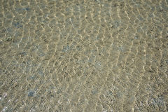 Ripple water wave. In sea ocean Stock Photography