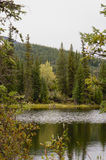 Rippled lake and autumn colors Royalty Free Stock Photo