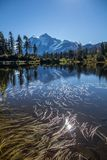 Mount Shuksan and cumulus cloud reflected in rippled Mirror Lake stock images