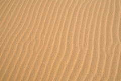 Rippled sand background Stock Images