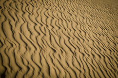 Rippled Sand. Background texture pattern Stock Images