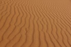 Rippled Sand Stock Image