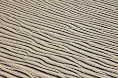 A rippled sand dune Stock Images