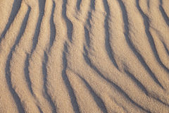 Rippled sand. Stock Image