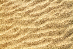 Rippled sand texture Royalty Free Stock Image