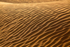 Rippled Sand Waves In The Desert. Landscape Of Rippled Sand Waves In The Desert royalty free stock images